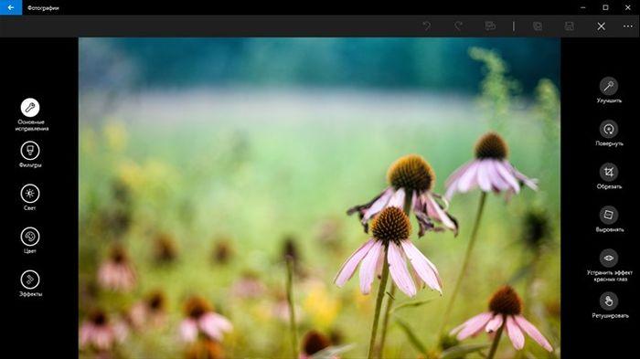 Приложение «Фотографии» (в Windows 10 Preview) теперь позволяет создавать альбомы