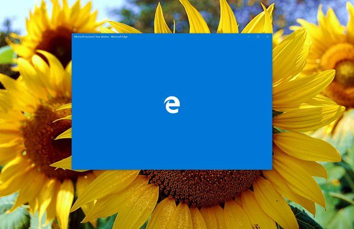 В Microsoft Edge не будет встроенного блокировщика рекламы